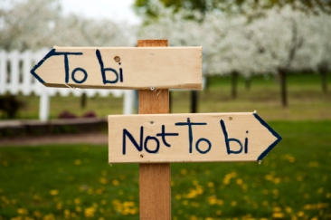 To bi or not to be